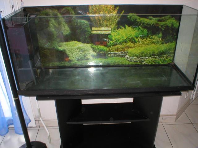 remplissage-aquarium
